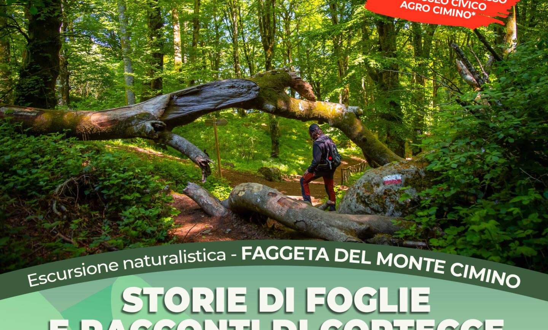 Storie di foglie e racconti di cortecce – Escursione naturalistica