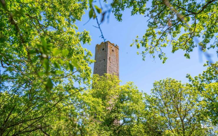Minitour: Torre di Chia